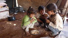 """Türkiye'de Gelir Dağılımı Eşitsizliğinin Bir Sonucu Olan Çalışan """"Yoksulluk"""""""