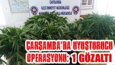 Çarşamba'da Uyuşturucu Operasyonu: 1 Gözaltı