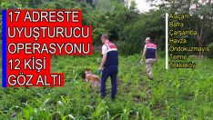 Samsun'un İlçelerindeki 17 Adresteki Uyuşturucu Operasyonlarında 12 Kişi Göz Altına  Alındı
