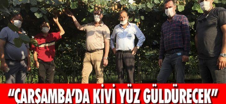 """""""Çarşamba'da Kivi Yüz Güldürecek"""""""