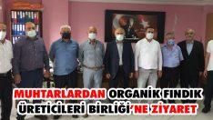 Muhtarlardan Organik Fındık Üreticileri Birliği'ne Ziyaret